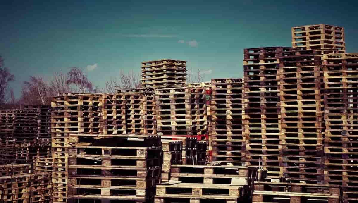 La industria del reciclaje de palets, un negocio con futuro y respetuoso con el medio ambiente